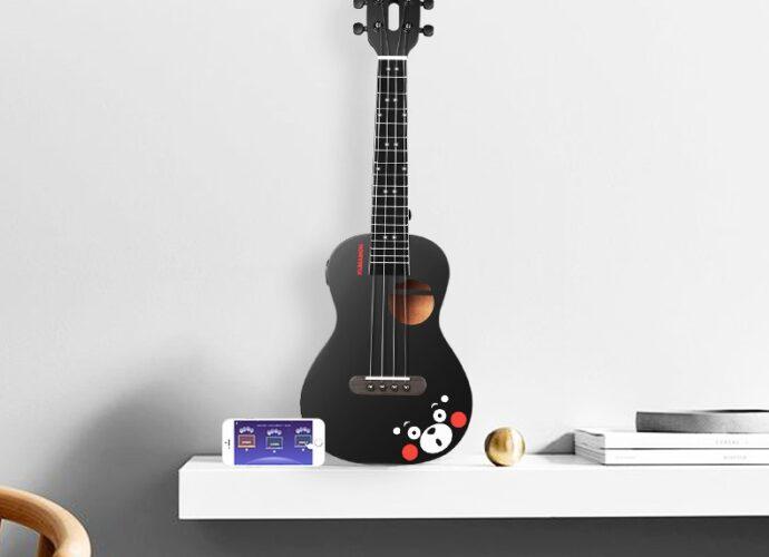 С чем поставляются новые гитары?
